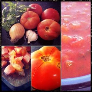 molho de tomate caseiro (1/6)