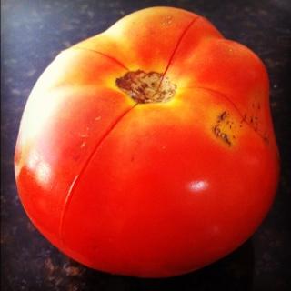 molho de tomate caseiro (3/6)